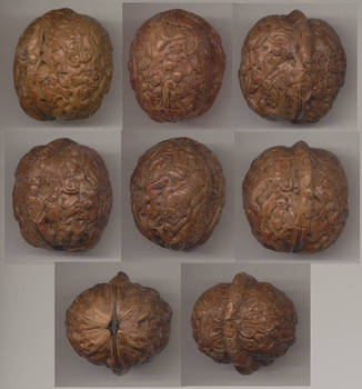 XIXc. China walnut engraved shell sculpture !
