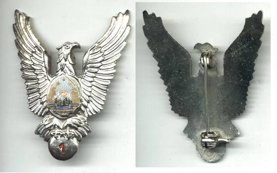 1960 Romania PILOT Aviation 1C badge wings RR