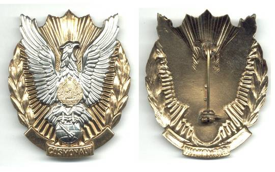 1981 Romania pilot cosmonaut astronaut badge