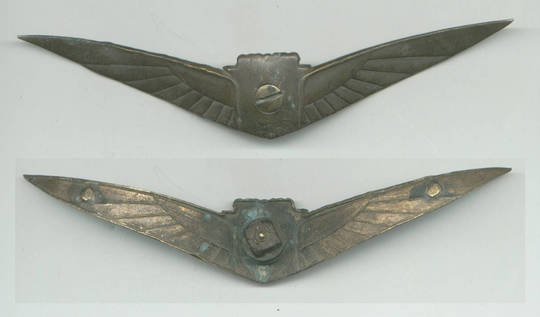 Vintage US wing aviation badge transportation