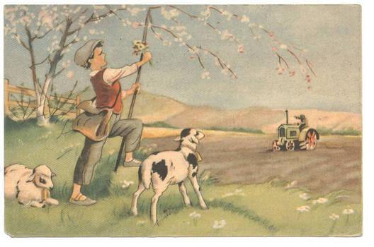 1950 Socialist propaganda postcard artist 1