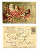 1905 Serbia color 4 cat kittie play postcard