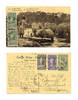 1930 Belgium Congo Elephant bath postcard RRR