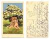 1923 Vintage Kissing cupids artist postcard !