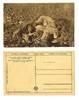 WWI Serbia Dead Soldier propaganda postcard 1
